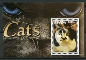 Uganda 2013 MNH Cats Calico Cat 1v S/S Pets Domestic Animals Stamps