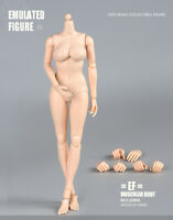 1/6 Scale Large Breast Pale Skin Female Body Half-seamless Girl Action Figure