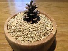 SIBERIAN ORGANIC KERNEL PINE NUTS 1 KG.You Will Love This Product !!!