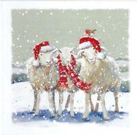 Charity Christmas Card Air Ambulance Service SHEEP Envelopes 10 Pack