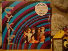 CYKLE LP/1969 US Garage Psych/Acid Punk/Vox Organ/Fuzz Guitar/Bohemian Vendetta