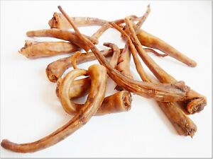 100% PURE PORK PIG TAILS - treats chews snacks NATURAL hypoallergenic