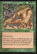 MTG Magic - L'Héritage d'Urza - Sylvin de Brisengraine -  Rare VF