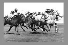BAGHDAD NOTE - 1970 Melbourne Cup winner modern Digital Photo Postcard