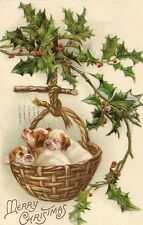 CARTE POSTALE FANTAISIE GAUFREE USA MERRY CHRISTMAS CHIENS CHIOTS DOGS