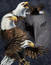 Ferocious Eagle Lenticular 3D Picture Animal Poster Painting Home Wall Art Decor