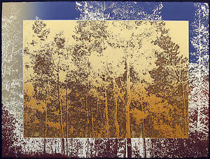 """Paula Crane """"Afterglow"""" Hand Signed & Numbered Etching, Landscape Forest Trees"""