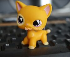 LPS Littlest Pet Shop Figure Orange Cat Purple Moon Bat Eyes #855 Girl Toys