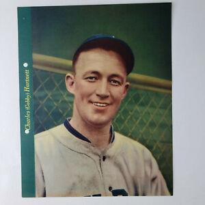 Gabby Harnett Dixie Cup Premium Baseball Photo Chicago Cubs 1937 Original