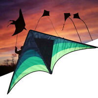 Large delta kite for kids and adults single line easy to fly kite handle include