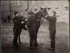 c.1890's PHOTO  - BRITISH ARMY PUTTING BREAKING HARNESS ON A HORSE