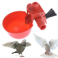 10Pcs Poultry Automatic Quail Water Drinker Drinking Cup Bird Coop Chick Feed√√√