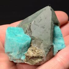 Microcline var. Amazonite with Quartz var. Smoky  Specimen Rock, Colorado 506016