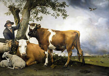 "Paulus Potter 1647, THE BULL, Cow, Farm, Sheep, antique decor, 14""x10"" Art Print"