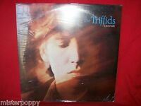 THE TRIFFIDS Calenture LP 1987  first pressing! SEALED MINT