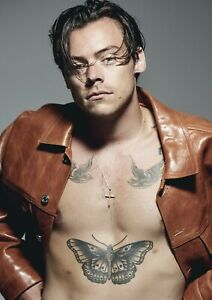 HARRY STYLES POSTER WALL ART - CHOOSE SIZE - FRAMED OPTION f