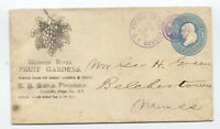 1877 Malden on the Hudson NY illustrated ad cover fancy cancel [y2580]