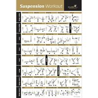 Laminated Suspension Exercise Poster - Strength Training Chart - Build Muscle...