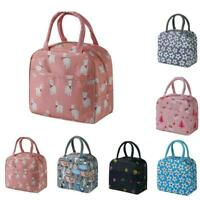 Insulated Picnic Cartoon Carry Cases Thermal Cold Lunch Portable Bento Bags H2S0