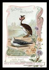 chromo AIGUEBELLE-le monde des oiseaux GRBE HUPPE'-GOELAND MARIN