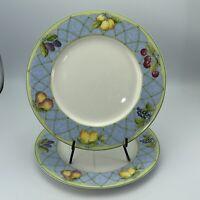 """Set of 2 Mikasa Optima Fruit Rapture Y4001 Dinner Plates 10-3/4"""""""
