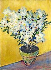 Claude Monet White Azaleas canvas print giclee 8X12&12X17 reproduction poster