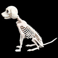 Halloween Skeleton  Dog Prop Animal Bones Party Shop Decoration Horror Halloween