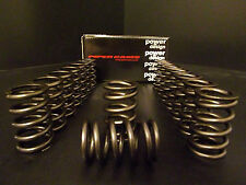 Z20 Piper Uprated Fast Road valve springs