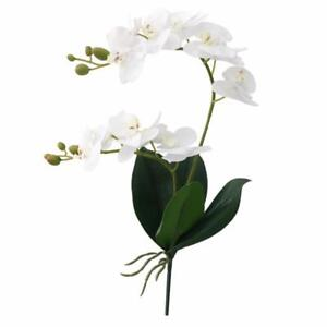 Artificial Flower Real Touch Latex Branch Orchid Flowers Leaf Wedding Decoration