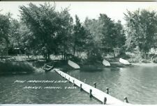 Backus MN Swarm's Resort, Pine Mountain Lake RPPC