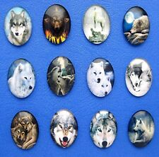 12 new mixed Glass Domed 3-D Wolf Wolves Wolfpack Lobo 25mm x 18mm craft Cameos