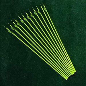 "12pcs 31"" Pure Carbon Arrows 2"" Feather Spine 300 Compound/Recurve Bows Hunting"