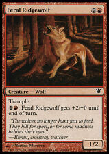 4x Lupo di Montagna Crudele - Feral Ridgewolf MTG MAGIC Innistrad Ita