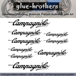 Campagnolo Sticker Choice of Colours Bicycle Decal Road Bike Wheel