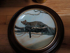 The world's most Magnificients Cat The African Leopard by Charles Frace 1991