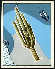 Nature In Danger #10 Panini 1987 WWF Sticker (C907)