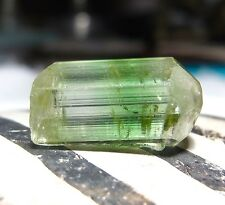 BEAUTIFUL AAAAA RARE GREEN TERMINATED GEM TOURMALINE 11.5x19.9mm CRYSTAL 24cts