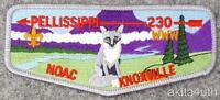 2000 NOAC Lodge 230 Pellissippi (S68) Great Smokey Mountains Council BSA/OA