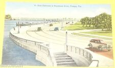 Bayshore Drive East Entrance Tampa Fl - Nice Old Cars Early 1940s postcard See!