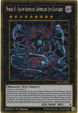 ♦Yu-Gi-Oh!♦Numéro 95:Dragon Matière des Ténèbres aux Yeux Galactiques PGL2-FR015