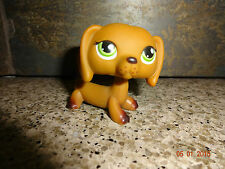 LPS - Littlest Pet Shop - Dachshund Brown Dog #139 Green Eyes