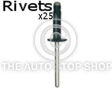 Panel Screw Aluminium Alloy Steel Manderal Renault Modus/Scala etc 11555 25PK
