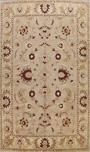Vegetable Dye Handmade Peshawar Traditional Oriental Area Rug Wool Carpet 10x14