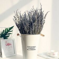 Dried Natural LAVENDER French Provence Bunch Fragrant Tied Decor 50/100 Stems.