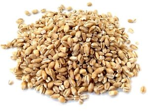 Pearl Barley, Grade A Premium Quality, Free UK P&P