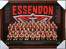 ESSENDON 2017 AFL TEAM PRINT POSTER BROWN FRAMED - JOBE WATSON, DYSON HEPPELL
