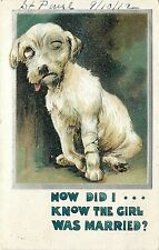 c1910 BB London Postcard; Beat Up Dog- How Did I Know the Girl was Married?