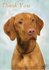 Hungarian Vizsla Thank You Card By Starprint