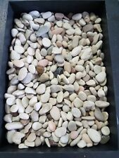 Natural Stone Indo Pebble 9-12mm 20kg bag