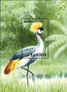 MODERN GEMS - Sierra Leone - Grey Crowned Crane Bird - Souvenir Sheet - MNH
